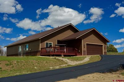 Pagosa Springs Single Family Home For Sale: 706 Scenic Drive