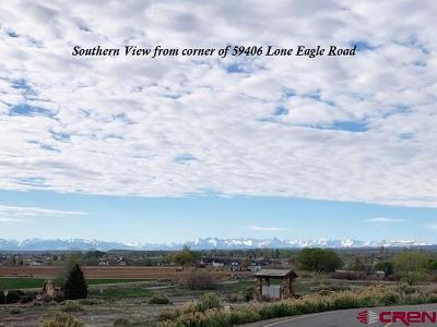 Montrose Residential Lots & Land For Sale: 59406 Lone Eagle Road