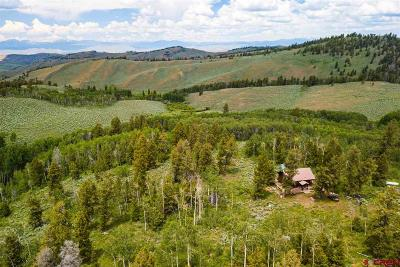 Gunnison Farm For Sale: 3063 Road