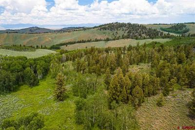 Gunnison Residential Lots & Land For Sale: 3063 Road