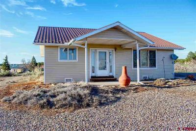 Mancos Single Family Home For Sale: 15021 Road 35
