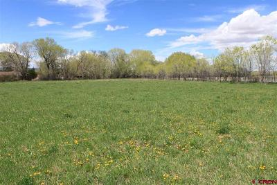 Montrose Residential Lots & Land UC/Contingent/Call LB: 1 Spring Creek Road