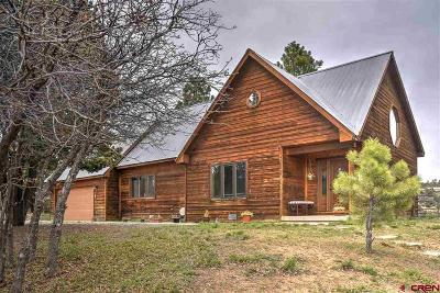 Durango Single Family Home For Sale: 749 Sawmill Road