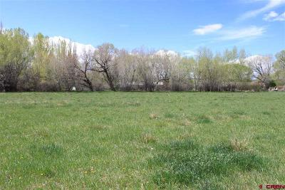 Montrose Residential Lots & Land UC/Contingent/Call LB: 2 Spring Creek Road