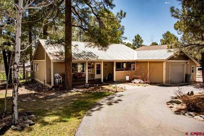 Pagosa Springs Single Family Home UC/Contingent/Call LB: 394 Handicap Avenue