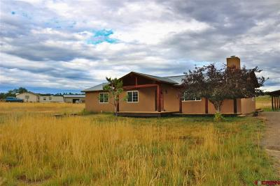 Durango Single Family Home For Sale: 480 Rustic Road