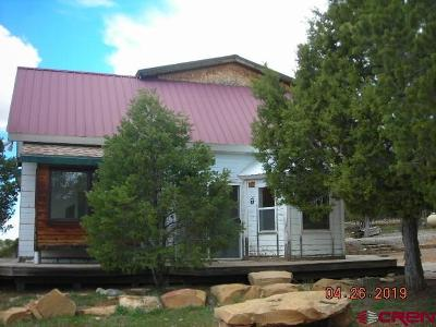 Hesperus Single Family Home For Sale: 550 Alkali Gulch