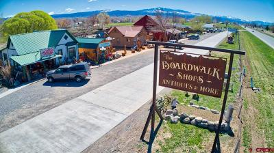 Montrose CO Commercial For Sale: $799,900