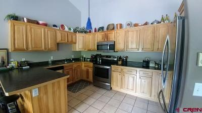 Ouray Condo/Townhouse For Sale: 1302 Main