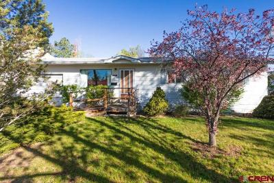 Montrose Single Family Home For Sale: 815 S 9th Street