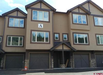 Condo/Townhouse For Sale: 20310 Us Hwy 160 #unit 3