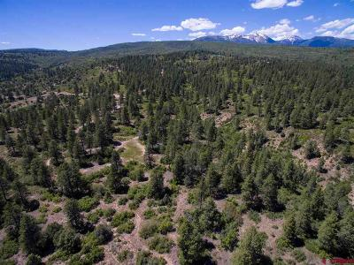 Durango Residential Lots & Land For Sale: 1102 Sheep Springs Road