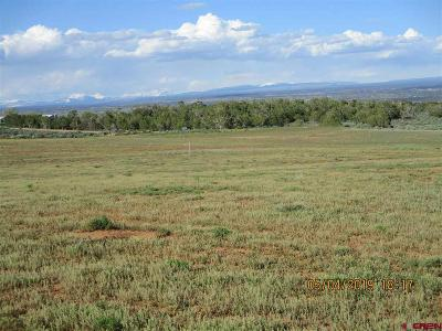 Cortez Residential Lots & Land For Sale: 13446 Road 17.9 Loop (G) Lot #11