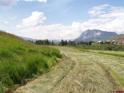 Gunnison County Residential Lots & Land For Sale: 21500 Highway 135