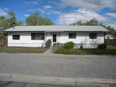 Montrose Single Family Home UC/Contingent/Call LB: 547 N 7th Street