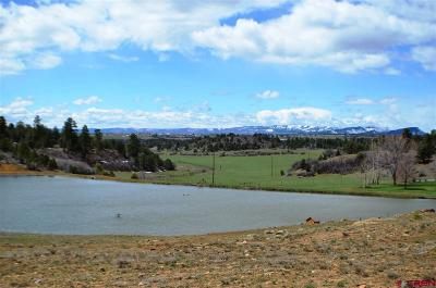 Durango Single Family Home For Sale: 3360 Cr 228
