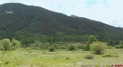 Silverton Residential Lots & Land For Sale: Reese And Hwy 550 Street