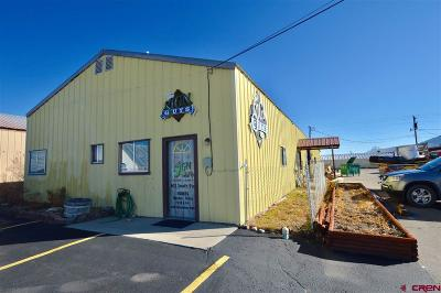 Gunnison County Commercial For Sale: 612 S 9th Street