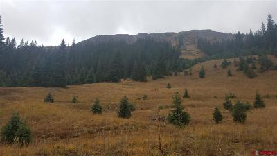 Silverton Residential Lots & Land For Sale: Cr 52