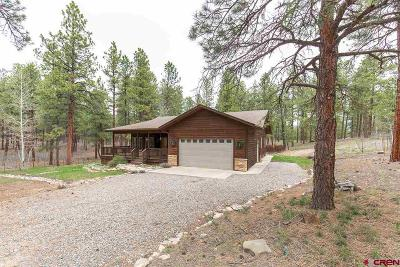 La Plata County Single Family Home UC/Contingent/Call LB: 94 Stagecoach Road