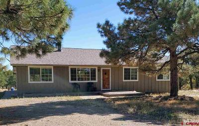 Durango Single Family Home For Sale: 1589 Long Hollow Circle