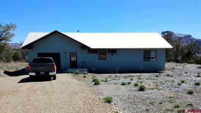 Mancos Single Family Home For Sale: 7587 Road 40.3