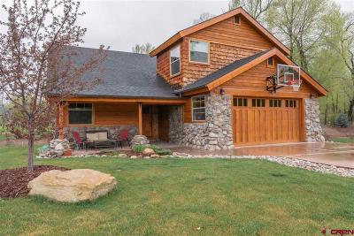 La Plata County Single Family Home For Sale: 736 Hermosa Meadows Road