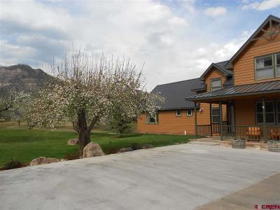 La Plata County Single Family Home For Sale: 7776 Cr 203