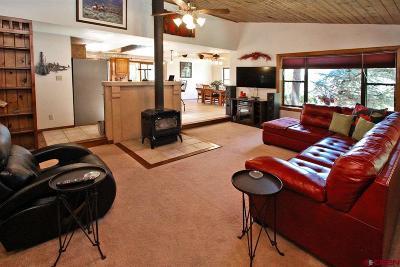 La Plata County Single Family Home For Sale: 2514 Borrego Drive