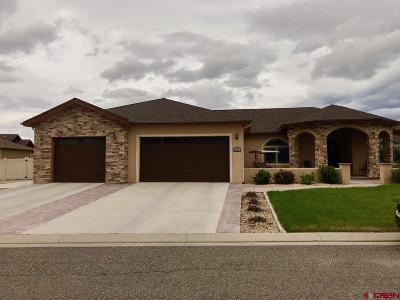 Montrose Single Family Home UC/Contingent/Call LB: 1524 Windsor Way