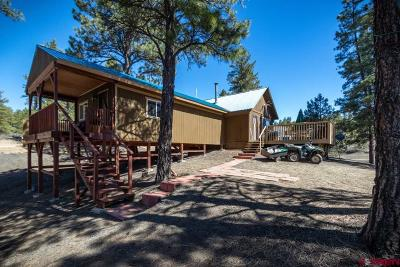 Pagosa Springs Single Family Home For Sale: 118 Gopher Lane