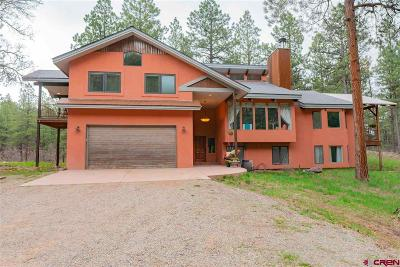 La Plata County Single Family Home For Sale: 53 Saddle Lane