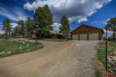 Pagosa Springs Single Family Home For Sale: 317 Arrowhead Drive