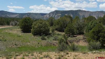 Durango Residential Lots & Land UC/Contingent/Call LB: Braceland