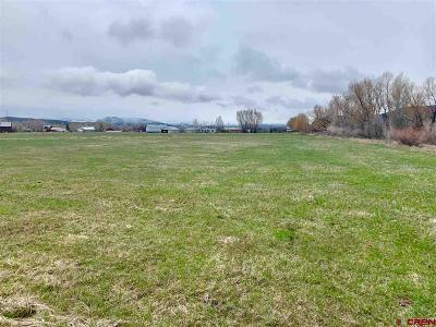Gunnison Residential Lots & Land For Sale: 42 Sydney Court