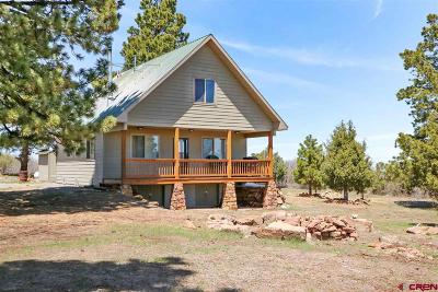 Ouray County Single Family Home For Sale: 2100 Bible Camp Road