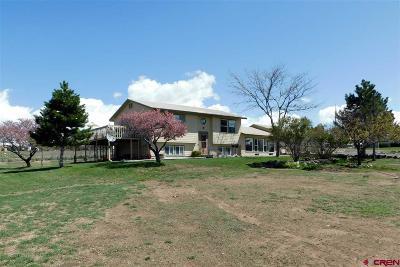 Cedaredge Single Family Home For Sale: 25191 Ira Way