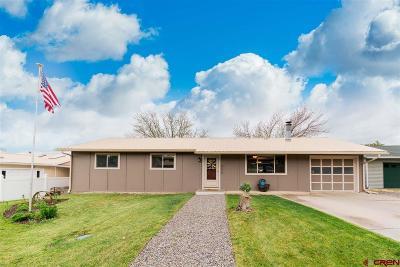 Montrose Single Family Home UC/Contingent/Call LB: 1013 Centennial Drive