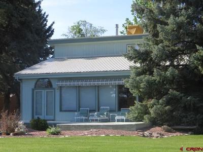 Montrose Single Family Home For Sale: 2420 E Miami Road