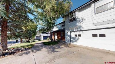 La Plata County Single Family Home For Sale: 1611 Eastlawn