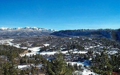 Mancos Residential Lots & Land For Sale: Road 46