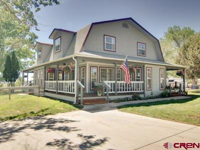 Dolores Single Family Home For Sale: 13347 27.6