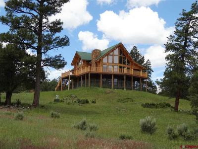 Pagosa Springs Single Family Home For Sale: 251 Golden Spruce Court