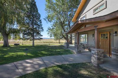 La Plata County Single Family Home For Sale: 5497 Cr 302