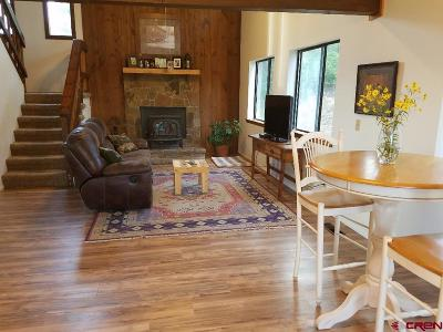 Pagosa Springs Single Family Home For Sale: 70 Winchester Drive