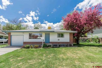 Montrose Single Family Home For Sale: 1308 Bristol Drive