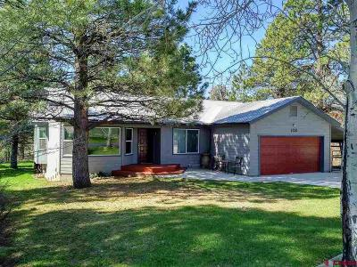 Durango Single Family Home UC/Contingent/Call LB: 108 Cedar Drive