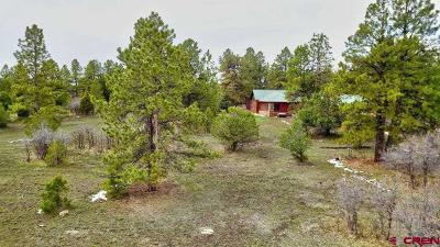Ridgway Residential Lots & Land For Sale: Bear Cub Drive