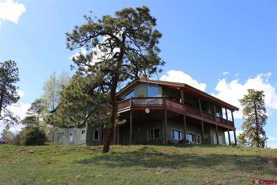 La Plata County Single Family Home For Sale: 1650 Sheep Springs Road