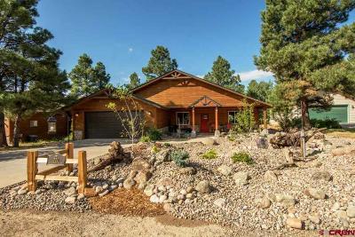 Pagosa Springs Single Family Home UC/Contingent/Call LB: 220 Woodsman Drive